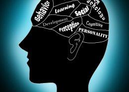 کدام نکات را باید در انجام پایان نامه دکتری روانشناسی مد نظر قرار دهیم؟