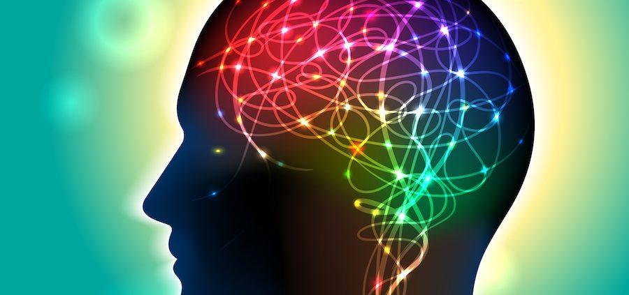 دستور زبان ، قالب و طرح بندی در انجام رساله دکتری روانشناسی